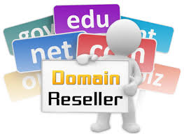 Domains Reseller in Pakistan