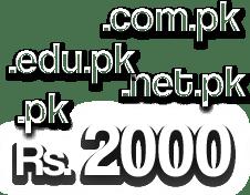 pk domain registration