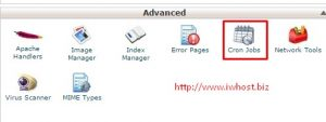 schedule database backup in cPanel using cron job
